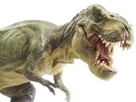 Isolated dinosaur and monster model in white (dinosaur, rex, tyrannosaurus)