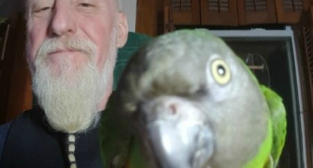 Profile picture itch REzman and Peaches the Senegal Parrot
